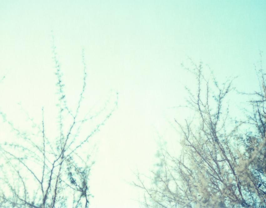 Flyingaway_cduarte_11.jpg