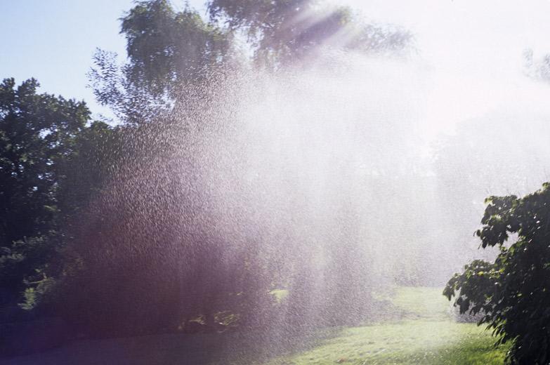 botanic_garden_water_1.jpg