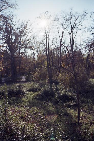 parks22.jpg