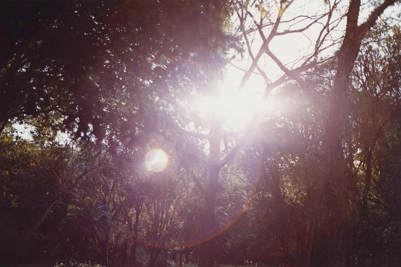 parks24.jpg