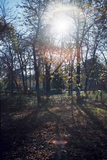 parks27.jpg