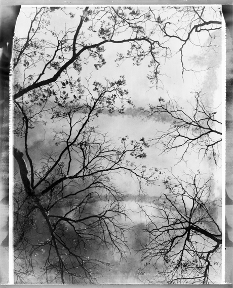 polaroid11-02.jpg