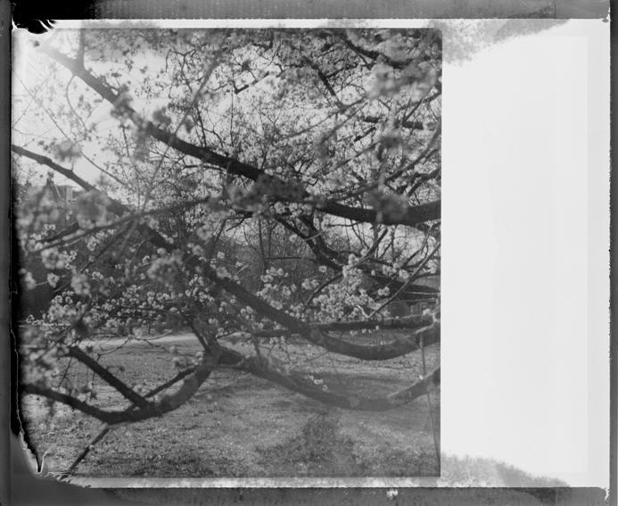 polaroid13-02.jpg