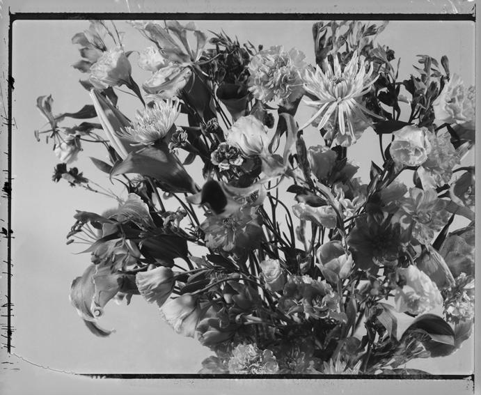 polaroid15-02.jpg
