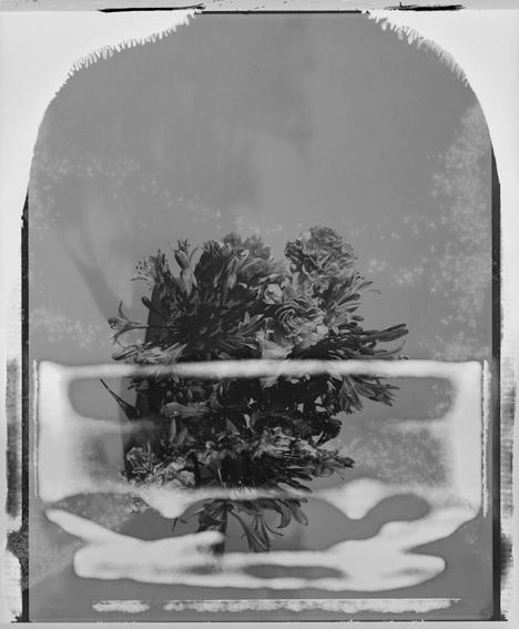 polaroid15-03.jpg